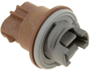 Parking Light Socket Dorman/Conduct-Tite 84768
