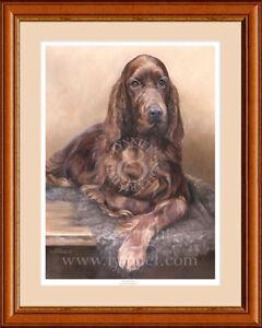 IRISH 'RED' SETTER fine art limited edition dog print