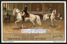 Schooling Training Horses Piaffe 1930s Trade AdCard