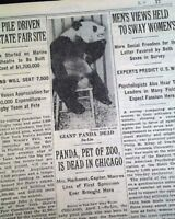 SU LIN Ruth Harkness 1st Giant Panda Brookfield Zoo DEATH 1938 Old Newspaper