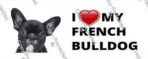 I love my French Bulldog Bumper Sticker Cute Puppy Dog Sticker Decal Ute Car