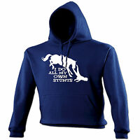 I DO ALL MY OWN STUNTS HORSE HOODIE hoody funny birthday gift present him her