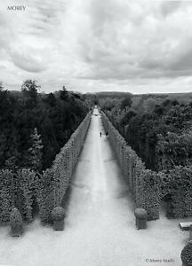 Versailles 0292 B&W Landscape Signed Limited Edition 8.5x11 Photo by Craig Morey