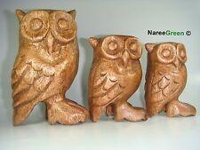 Hand Carved Wood Owl Auspicious animals Owl Family