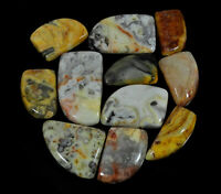 11Pcs Natural Crazy lace agate 362Cts. Fancy Cabochon Loose Gemstone Lot g246