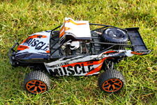 AMEWI RC SAND BUGGY EXTREME D5 1:18 4WD RTR