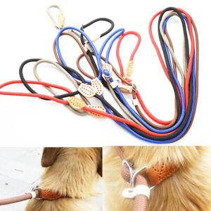 P Chain Dog Leash Slip Collar Pet Walking Leads Nylon Pet Traction For D M/