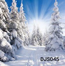 10X10FT XMAS Snows Background Photography Photo Studio Vinyl backdrop DJS045