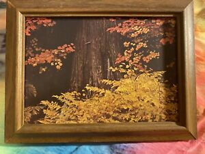 Vintage Rustic Outdoor Framed Wall Decor Cottagecore