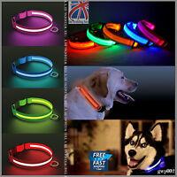 LED Dog Pet Collar Flashing Luminous Adjustable Safety Light Up Nylon Tag gwp002