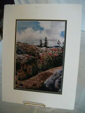 Water Color Print Signed/Numbered, Brown County Artist James Oblack, landscape