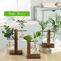 Glass Hydroponic Plant Vase Terrarium With Wooden Stand Transparent Flower Pot
