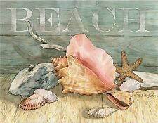 BEACH SEASHELLS STARFISH  SET OF 4 COASTERS RUBBER WITH FABRIC TOP