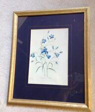 Framed P. J Redoute print Campanule Clochette