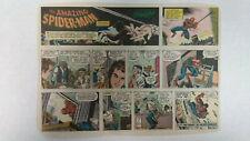 AMAZING SPIDER-MAN Newspaper Comic Strip                   Sunday April 1st 1979