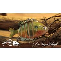 "Bluegill  Swim Bait 3.5"" Jointed Fishing Lure Official Lowman Lures Lip Ripper"