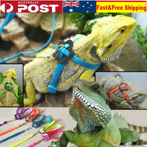 Reptile Lizard Harness Adjustable Training Rope Leash Multicolor Outdoor Harness
