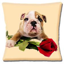 "NEW ENGLISH BULLDOG PUPPY RED ROSE VALENTINE LOVE Cream 16"" Pillow Cushion Cover"