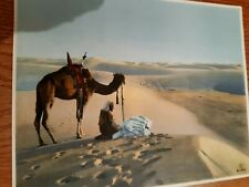 A Collection of 14 X A4 Colour Old/Vintage Prints -Desert Life, Arab, Nt. Africa