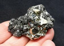 "1.75"" OCTAHEDRAL PYRITE with SPHALERITE from the Huanzala Mine, Peru"