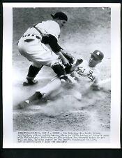 Jim Delsing & Joe Astroth 1952 Press Photo St. Louis Browns Philadelphia A's