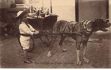 CPA -BELGIQUE-   Attelage de chiens - Laitière flamande.
