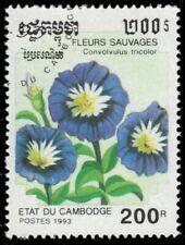"""CAMBODIA 1265 - Wild Flowers """"Convolvulus tricolor"""" (pf44067)"""