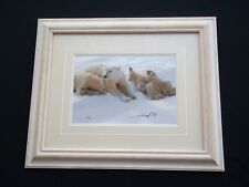 "Mangelsen        ""Polar Bears Laying in Snow ""    Signed/Numbered/Framed"
