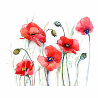 Flowers Painting Of Poppies Large Wall Art Print Canvas Premium Poster