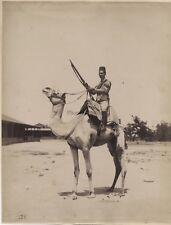 Egypte Cavalier DromadairePhotographie Lekegian Vintage Albumine c1880