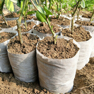 100Pcs Biodegradable Non-woven Garden Yard Nursery Plant Grow Bags Pots Seedling