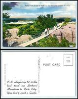 TENNESSEE Postcard - Rock City Gardens - Lookout Mountain, Swing Along Bridge M3