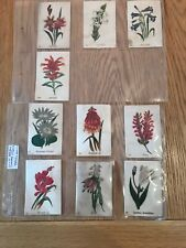 More details for silk bat british american tobacco south african flowers 2nd series type aa x10