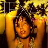 TEXAS The Hush CD Album 1999 WIE NEU In Our Lifetime / Summer Son Rock Klassiker
