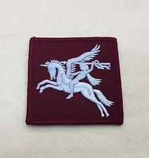 Airborne DZ Flash, Arm Badge, Army, Pegasus, Light Blue, Maroon, Patch, Sleeve
