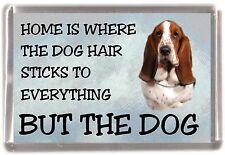 "Basset Hound Dog Fridge Magnet ""Home is Where"" Design No 1 by Starprint"
