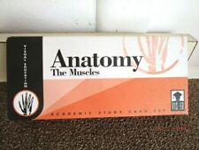 Anatomy The Muscles Vis-Ed Academic Study Flash Card Nurse Massage
