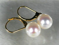 hot sell 10mm aaa+ grade white akoya shell pearl dangle earring 18K GP