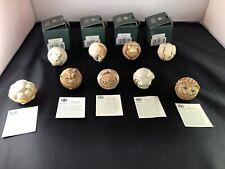Lot 9 Harmony Kingdom Roly Polys Figurines Box Rosie, Dizzie, Louis, Curly,