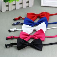 New Puppy Dog Cat Bowknot Bow Tie Adjustable Necktie Collar Bowtie Pet  Precious