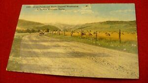 "Montana ""highway"" postcard grain fields snowy mountains 1920's #2056"