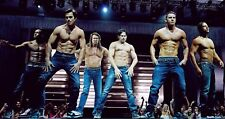 Magic Mike Poster Length :800 mm Height: 500 mm  SKU: 2833