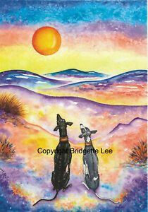 Whippet greyhound Dog lurcher Watercolor/ink  painting/print  By Bridgette Lee