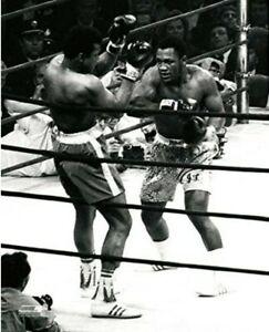 "Joe Frazier vs. Muhammad Ali Fight of the Century Photo (Size: 8"" x 10"")"