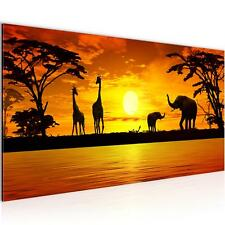 Bild Bilder Wandbild XXL 100x40 cm Afrika - Kunstdruck Leinwand Vlies - Wanddeko