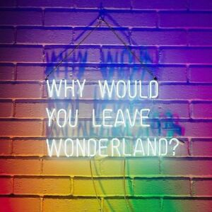 "17""x14""Why Would You Leave Wonderland Neon Sign Light Handcraft Gift Visual Art"