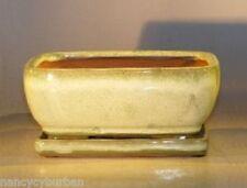 "Bonsai Pot Pre-Wired Rectangle w/ Tray Ceramic Woodlawn Green 8.5"" x 6.5"" x 3.5"""
