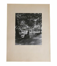 Im Gegenlicht, Polental, orig. Fotografie H. Blanck, Fotokunst d. 50er Jahre