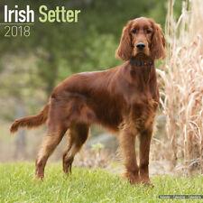 Calendrier 2018 - SETTER IRLANDAIS