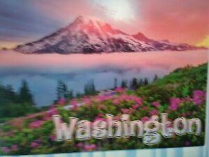 BEAUTIFUL POST CARD SUNRISE MOUNT RAINIER NATIONAL PARK WASHINGTON